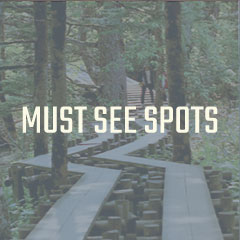Must-see Spots